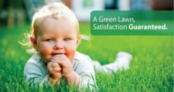 Senske, Lawn Care, Fertilization, Spring, Lawns, Green, Weed Control