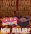 Brownie Batter Frozen Yogurt