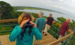 Birding Panama Canopy Tower Bocas