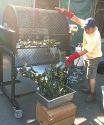Fire-roasting Hatch green chile with a traditional roaste