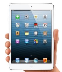 iPad Mini Amazing Selling Machine Bonus