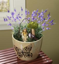 Indoor Fairy Garden Pot