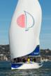Sunsail's First 40 Yachts Now Available for Half and Full Day Charters...