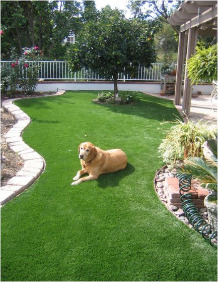 Landscaping for dogs on pinterest wood fences dog runs for Garden designs for dogs