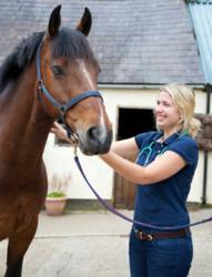 Globe University AAS in Animal & Equine Science