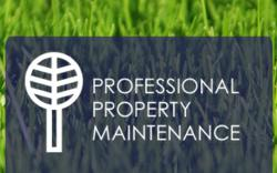 Professional Property Maintenance