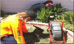 San Diego Drain Cleaning Rooter Service