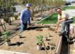 Vista Metals Corp., Spring, Employee Garden, Specialty Aluminum Products