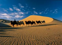 Camel Riding in Xinjiang