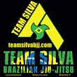 Team Silva Martial Arts Academy- the Best Brazilian Jiu-Jitsu...