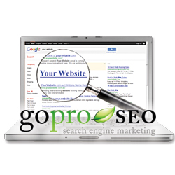 GoProSEO Top of Google Website Rankings