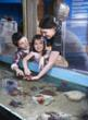 Children meeting a starfish at the The Oceanarium