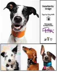 Some of the Pet ID Tags from BlanketID.com's Design by Donation Program