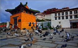 Tibet permit 2013