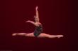 Tiffany's Dance Academy Student Wins Top Award in Dance at San Ramon...