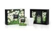 White Narcisse Collection