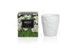 White Narcisse Luxury Scented Candle