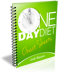 Free One Day Diet Plan