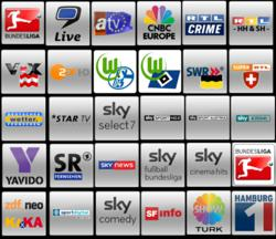 touchsquid favorite screen for german television channels
