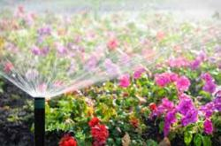 Lawn Sprinkler & Irrigation System