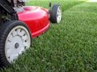 The Grounds Guys(r) Offers Five Overlooked Lawn Care Tips for First Time Homeowners