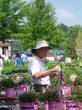 Wake Forest Herbfest Sponsors America In Bloom Competition