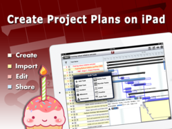 Price Drop - 70% - Project Planning Pro celebrating 1 year birthday