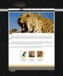 Lombard Street PhotoBiz HTML5 Content Site