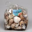 Unscented Sea Shell Bag