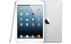 iPad Giveaway | Authority ROI