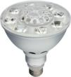Litetronics LED PARFECTION PAR38 Bulb
