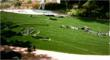 synthetic turf,artificial turf,artificial grass,landscape products,landscaping,landscape surfaces,recreational surfaces,putting greens,landscape surfaces