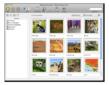 Desktop Client for Mac