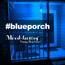 Pinterest users who repin this image with the hashtag #blueporch will donate $1 to Chicago's Autism Speaks Chapter.