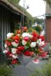 Begonias look gorgeous in hanging baskets