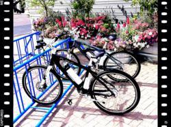 Electric Bikes by Flight Bikes USA