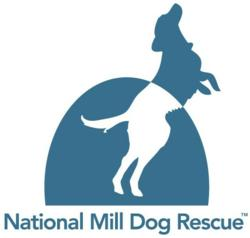 The Dogington Post and The National Mill Dog Rescue Teamed up to Bring Dog Lovers a Fun and Exciting Way to Support Mill Dog Rescue Efforts