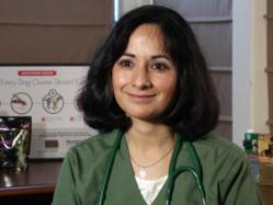 Dr. Savita Wadhwani has been a practicing veterinarian in Austin, Texas for more than 20 years.