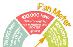 This fan meter shows the milestones they are trying to reach!