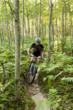 Mountain Biking in Traverse City