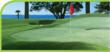 synthetic turf,artificial turf,artificial grass,landscape products,landscaping,landscape surfaces,recreational surfaces,putting greens,landscape surfaces,Iowa synthetic grass