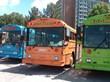 Boomerang Buses