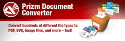 Accusoft Releases Prizm Document Converter, High-performance document and PDF conversion engine quickly converts 300+ file types into many different formats
