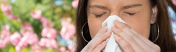 Spring = Allergy Season