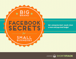 Big Brand Facebook Secrets for Small Businesses eBook