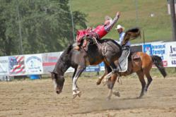 Saddle-bronc riding is just one of many rodeo events taking place at the 61st Annual Coarsegold Pro Rodeo on May 4 and 5.