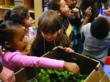 Children benefiting from the delivery of fresh produce as part of the Farm to Childcare grant through King County Public Health.