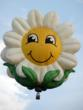 """Ella Phant,"" ""Miss Daisy"" and ""Sunny Boy,"" Plus 50 More Balloons to..."