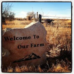 Motherlove Organic Legacy Farm