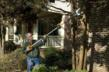 JawSaw with extension pole reaches branches up to 12 feet off the ground.